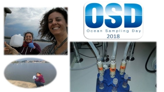 Compilations of OSD collecting photos